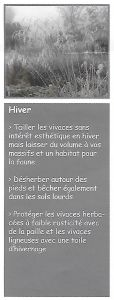 Scan1 hiver