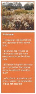 Scan4 automne