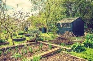 langouet-autonomie-alimentaire-permaculture-1