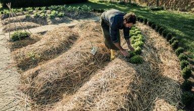 langouet-autonomie-alimentaire-permaculture-3